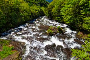 竜頭の滝の写真素材 [FYI02995402]