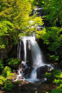 竜頭の滝の写真素材 [FYI02995407]