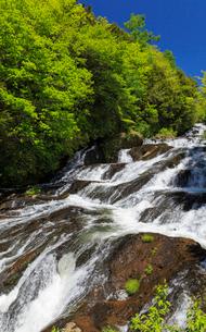 新緑と竜頭の滝の写真素材 [FYI02995409]