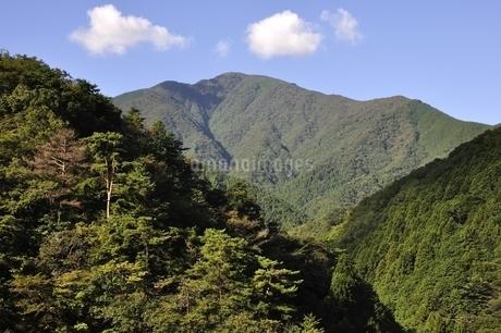 青根から眺める大室山の写真素材 [FYI02995449]