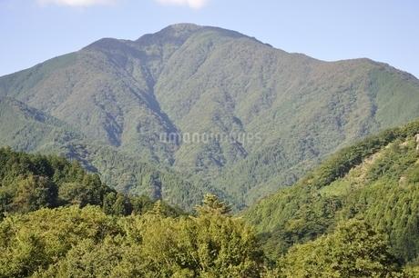 青根から眺める大室山の写真素材 [FYI02995457]
