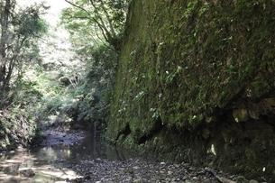 牧馬沢の絶壁の写真素材 [FYI02995468]