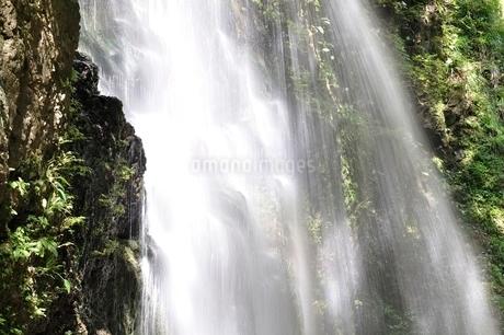 牧馬大滝の写真素材 [FYI02995496]
