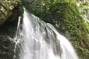 牧馬大滝の写真素材 [FYI02995527]