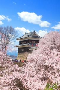 上田城千本桜と南櫓とわた雲の写真素材 [FYI02995567]