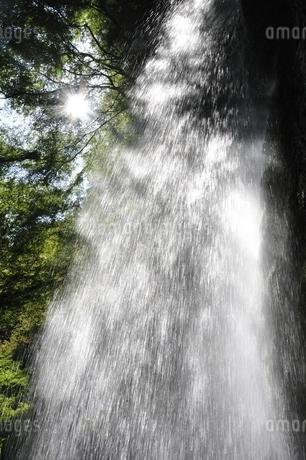 牧馬大滝の写真素材 [FYI02995593]