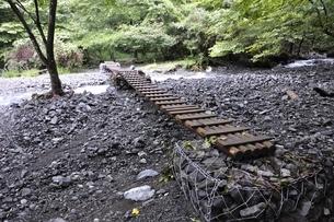 勘七沢の木橋の写真素材 [FYI02995597]