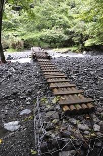 勘七沢の木橋の写真素材 [FYI02995598]