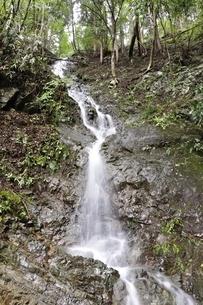 大雨で現れた滝の写真素材 [FYI02995599]