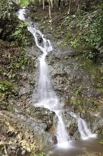大雨で現れた滝の写真素材 [FYI02995603]