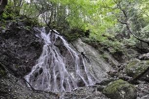 大雨で森にできた滝の写真素材 [FYI02995608]