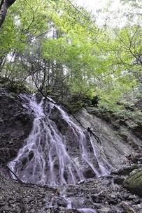 大雨で森にできた滝の写真素材 [FYI02995610]