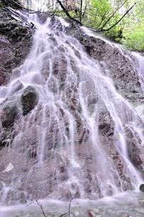 大雨で森にできた滝の写真素材 [FYI02995613]