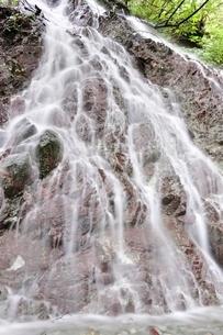 大雨で森にできた滝の写真素材 [FYI02995614]
