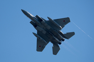 F-15戦闘機 ペイパーの写真素材 [FYI02995626]