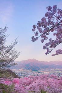 朝の戸倉宿キティパークの桜と冠着山の写真素材 [FYI02995682]