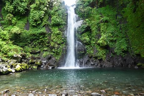 清水市の大棚の滝の写真素材 [FYI02995736]