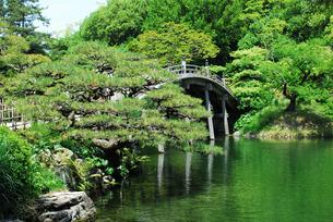 栗林公園の吹上亭から南湖に架かる偃月橋(えんげつきょう) の写真素材 [FYI02995786]