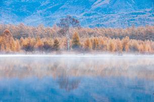 日光国立公園小田代ヶ原朝日に輝く紅葉を映す朝霧の湖面の写真素材 [FYI02995871]