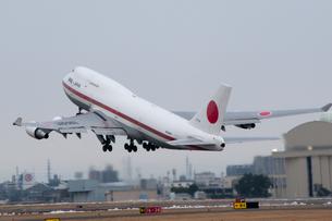 政府専用機 離陸 旧型の写真素材 [FYI02995874]