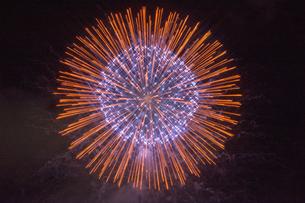 花火 クロスフィルター使用の写真素材 [FYI02995922]