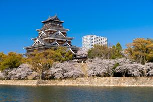 広島城天守とお堀の桜並木の写真素材 [FYI02995960]