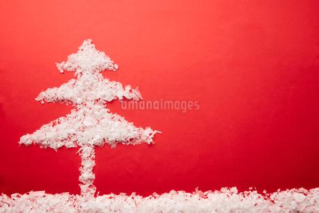 赤い背景に紙くずで出来たツリーの写真素材 [FYI02996055]