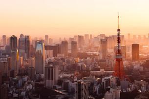 夜明けの東京都心の写真素材 [FYI02996344]
