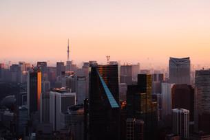 夜明けの東京都心の写真素材 [FYI02996346]