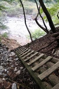 崩落した登山道の木道の写真素材 [FYI02996436]