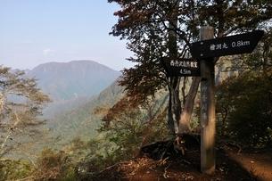 朝日さしこむ山道の写真素材 [FYI02996450]