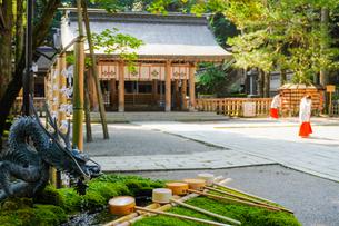 早朝の神社の写真素材 [FYI02996459]