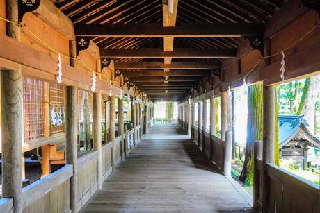 神社の回廊の写真素材 [FYI02996460]