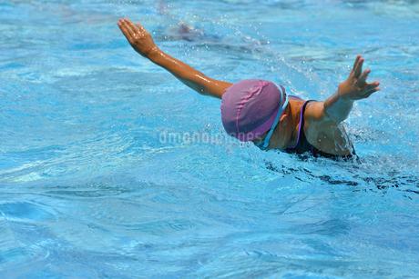 プールで泳ぐ女の子(バタフライ)の写真素材 [FYI02996766]