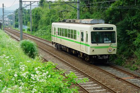 叡山電鉄の普通列車の写真素材 [FYI02996841]