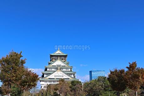 秋の大阪城公園の写真素材 [FYI02996871]
