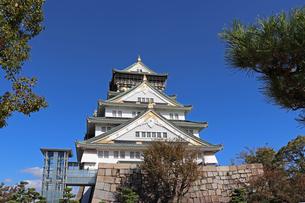 青空と大阪城天守閣の写真素材 [FYI02996873]
