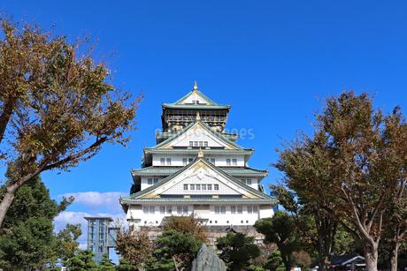 秋の大阪城公園の写真素材 [FYI02996874]