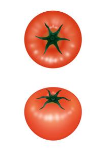 トマトのイラスト素材 [FYI02996888]