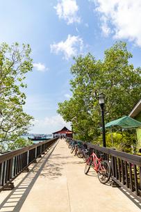 シンガポール ウビン島の桟橋の写真素材 [FYI02996930]