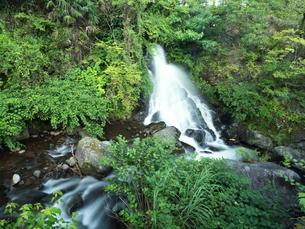 湯河原町 だるま滝の写真素材 [FYI02997023]