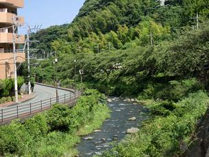 神奈川県湯河原町 千歳川の写真素材 [FYI02997035]