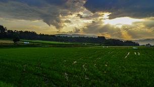 夕立ちあとの光芒の写真素材 [FYI02997121]