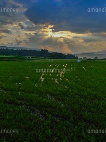 夕立ちあとの光芒の写真素材 [FYI02997122]
