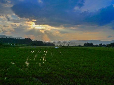 夕立ちあとの光芒の写真素材 [FYI02997123]