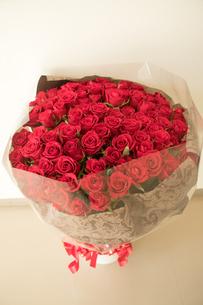 101本のバラ 薔薇の花束の写真素材 [FYI02997138]
