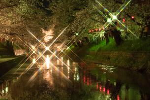 夜桜ライトアップ クロスフィルター使用の写真素材 [FYI02997149]