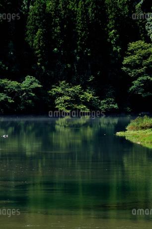 笠置峡の写真素材 [FYI02997223]