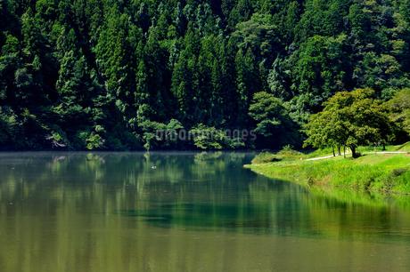 笠置峡の写真素材 [FYI02997225]