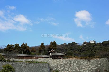 堀之内からの松山城の写真素材 [FYI02997242]